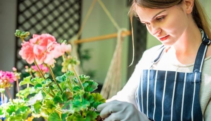 Evde Kendi Olanaklarıyla Bitki Yetiştirmek İsteyenlere Tavsiyeler