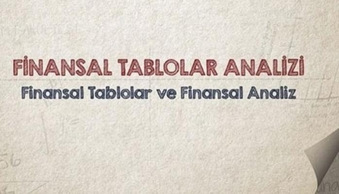 Finansal Tabloların Dili