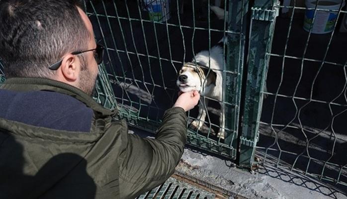 Hayvan Dostu Projeye İmza Attı