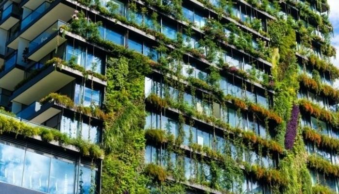 İklim Krizi Ev Alma Kriterlerini Değiştirdi