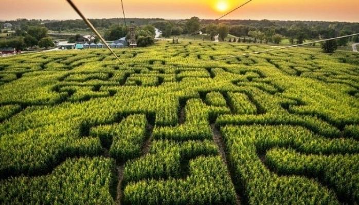Tarım ve Turizm Aynı Projede Buluştu