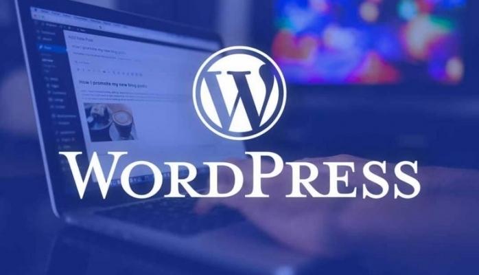 İçerik Yönetim Sistemi Kullananların İlk Tercihi Wordpress Oldu