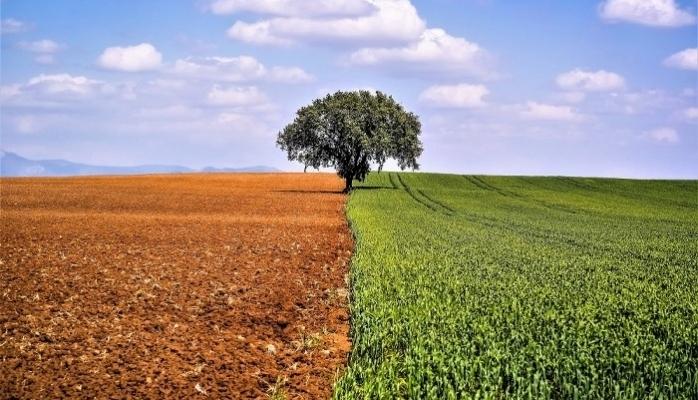 TEPE NAUTILUS'ta Tarım Ve İnsan Sergisi Başlıyor