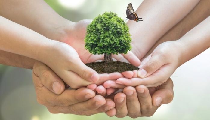 Günlük Hayatta Çevreyi Korumak İçin Yapabileceğiniz 7 Şey