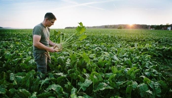 Çevresel Sorunlarla İlgili Endişe Gıdada Satın Alma Alışkanlıklarını Etkiliyor