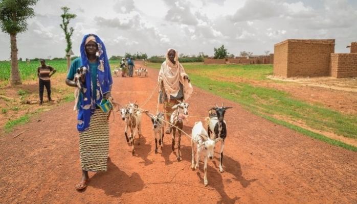 İyilik Derneği Afrika'nın Derdine Süt Keçileri İle Koşuyor
