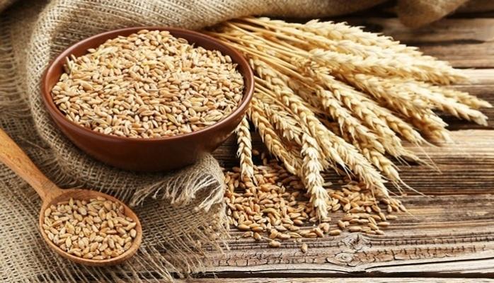 Gıda İthalatında Artış Sürüyor